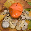 Foto Stock: Piggy Bank