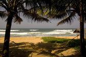 Plaj sandalye — Stok fotoğraf
