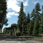 Caltrain tracks & trestle — Stock Photo