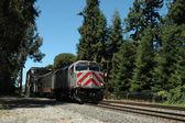 Treno dei pendolari. — Foto Stock