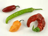 Chile medley — Stock Photo