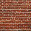 Brick wall — Stock Photo #2451581