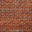 Brick wall — Stock Photo #2534720