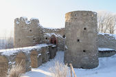 Fortress of Kopore in Leningrad region — Stock Photo