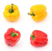Red and yellow peppers — Stock Photo
