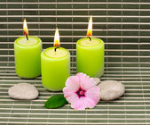 Candles stones and flower — Stok fotoğraf