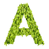 "Green alphabet. letter ""a"" — Stock Photo"