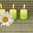 Foto de Stock  : Candles and flower