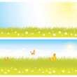 Background with grass and sky — Stock Vector
