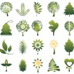 Set of tree — Stock Vector