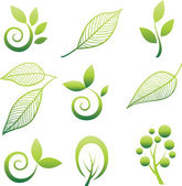 Set of leaf design elements — Vetor de Stock