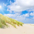 Beach and dunes with beautiful sunlight — Stock Photo