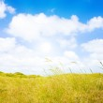 Idyllic dunes with sunlight — Stock Photo