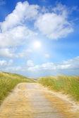 Güneş ışığı ile pastoral tepeleri — Stok fotoğraf