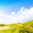 Idyllic dunes with sunlight — Stock Photo #1931459