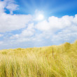 Idyllic dunes with sunlight — Stock Photo #1934417