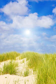 Idyllic dunes with sunlight — Stock Photo