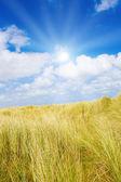 Dunas idílicas con la luz del sol — Foto de Stock