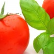 Tomato basil — Stock Photo