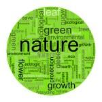 Nature illustration — Stock Photo #2618592