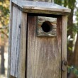 Wooden birdhouse - Stock Photo