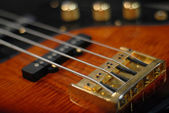 Electric strings — Stock Photo
