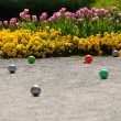 Stock Photo: Flowers and balls