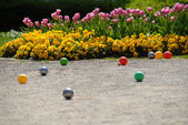 Flowers and balls — Stock Photo