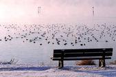 Vintriga seatplace — Stockfoto