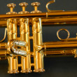 Stock Photo: Trumpet valves