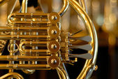 Golden instrument — Stock Photo