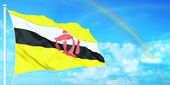 Brunei flag — Stock Photo