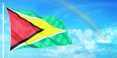 Guyana flag — Stock Photo