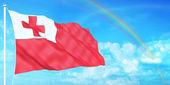 Tonga flag — Stock Photo