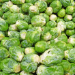 Stock Photo: Fresh brussel sprouts background