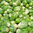 Royalty-Free Stock Photo: Fresh brussel sprouts background
