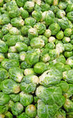 Fresh brussel sprouts background — Stock Photo