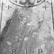 Stock Photo: Nineteenth century grave covering