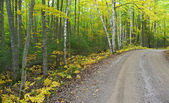 Autumn rural gravel road — Stock Photo