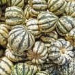 Sweet dumpling squash background — Stock Photo