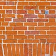Vintage brick wall background — Stock Photo #2172426