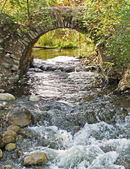 Stone arch over rushing stream — Stock Photo