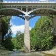 Vintage bridge over gorge and river — Stock Photo