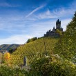 The castle in Cochem — Stock Photo