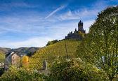 Cochem kalede — Stok fotoğraf