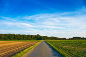 Country Road — Stok fotoğraf