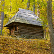 Old wooden house middle of  forest — Stock Photo