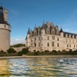 Beautiful Chenonceau castle in France - Stock Photo