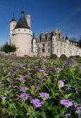 雪浓梭城堡在法国卢瓦尔河谷城堡群 — 图库照片