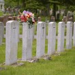 Stock Photo: Cemetary tombstones of war heroes